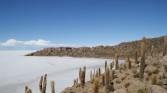13. Island admid Salt