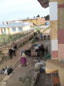 Isle de Sol - Donkeys carting supplies