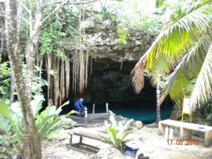 Diving in the Cenotes was like nothing else we'd ever seen before. An amazing world underground.