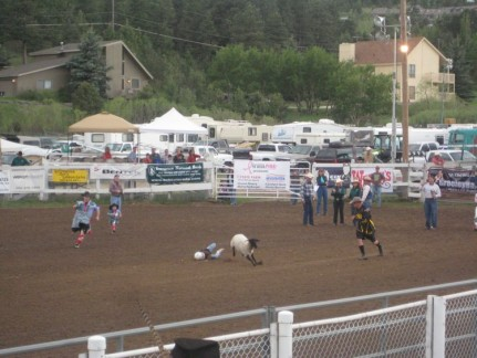 A kid is bucked off a crazy sheep in Mutton Bustin