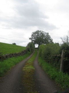 Exactly how we pictured some English roads.