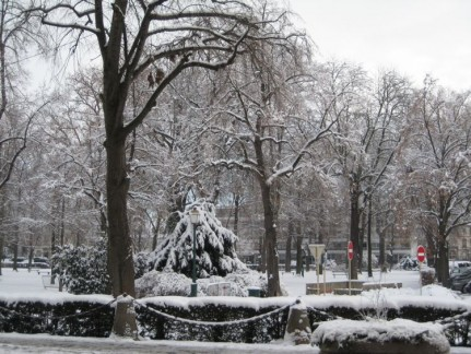 The street and park were beautifully covered in white