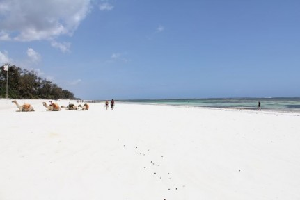 The magnificent Diani Beach. If it wasn't so windy it would have been even better...