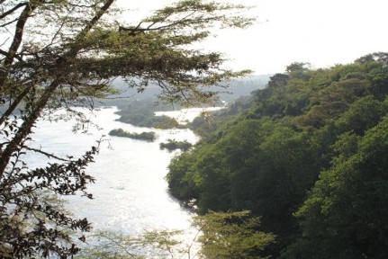 View of the White Nile from Jinja Campsite...