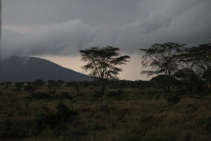Weather like this unfortunately meant a fairly quiet game drive...