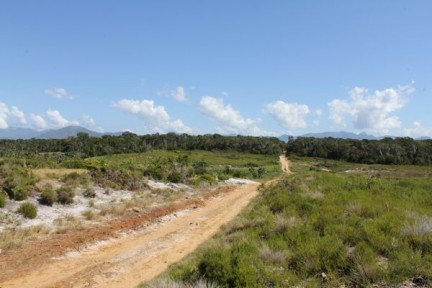 Cleared land with one of our study sites (forest fragments) in the distance.