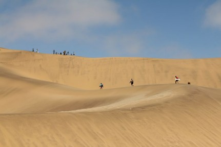 People walking the large dune to then hoon down it!