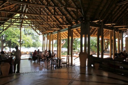 Chobe Lodge is great for nice drink on the river and internet access...