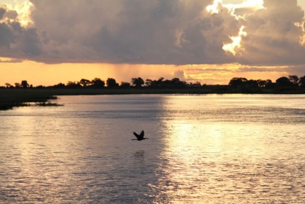 An amazing scene to finish our cruise on Chobe River...