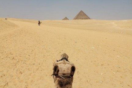 Despite how commercialised the visit to the Giza pyramids were it was still good fun and we well seeing.