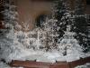 colmar-snow-on-trees