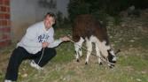 Isle de Sol - Pete and his Lama